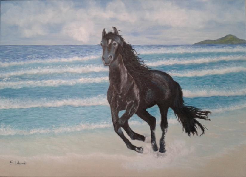 cavallo-finito
